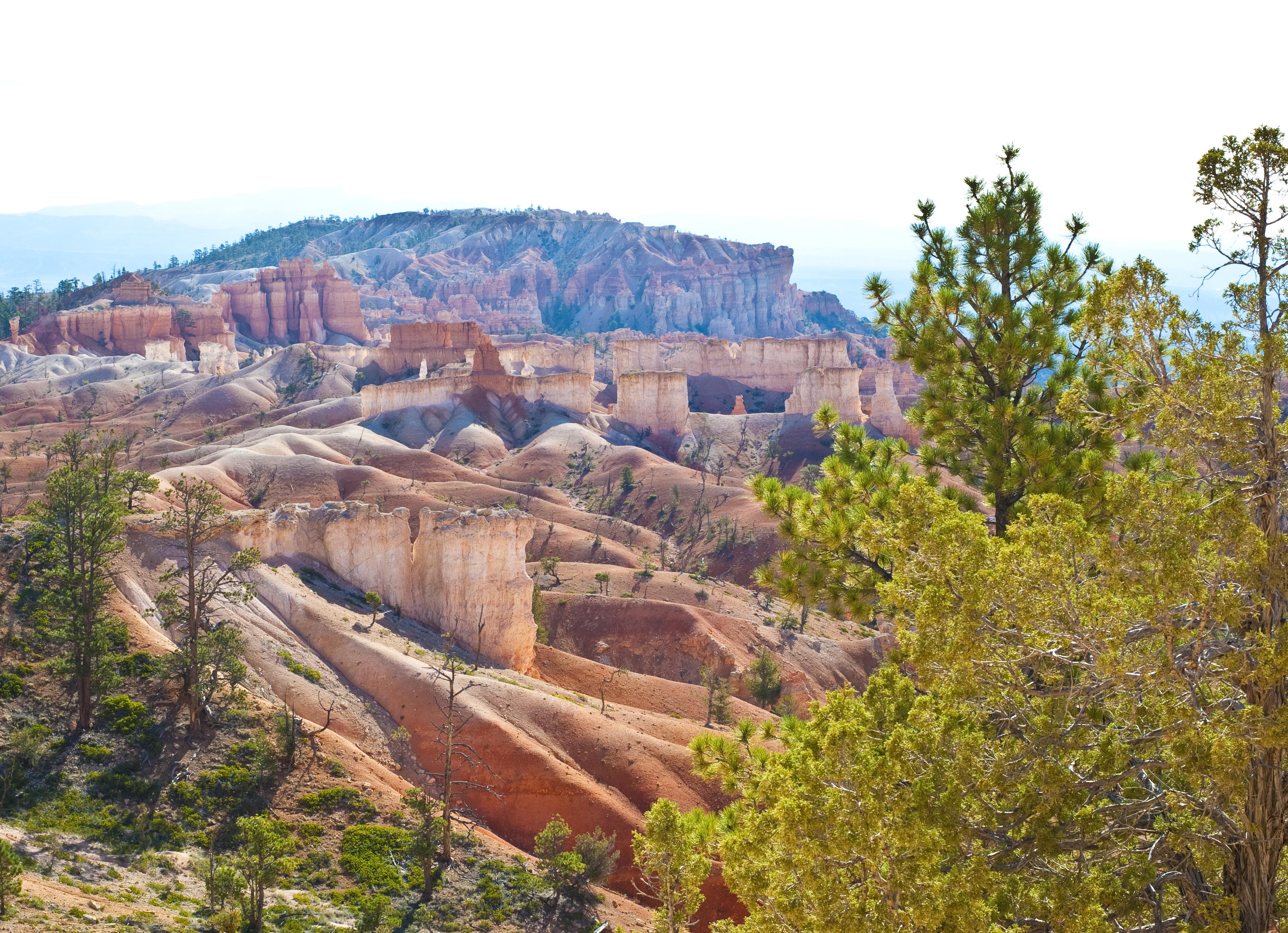 Eine Auswahl an den besten Weltreiseblogs