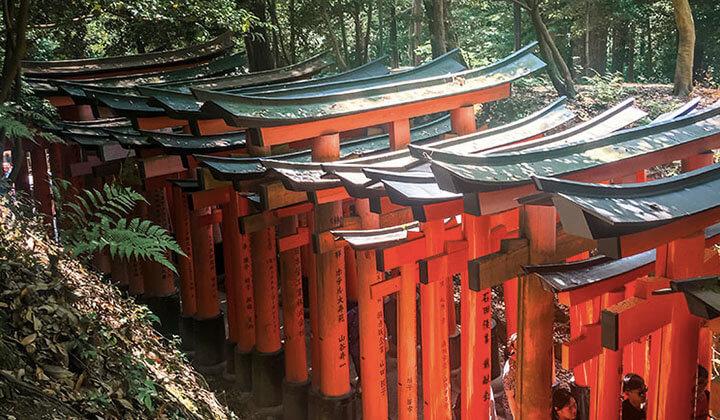 Die roten Tore von Kyoto