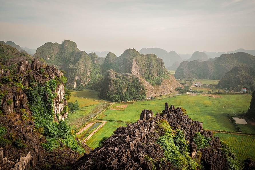 Ausblick auf Reisfelder